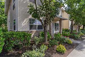 Browse active condo listings in DIVISION MANOR